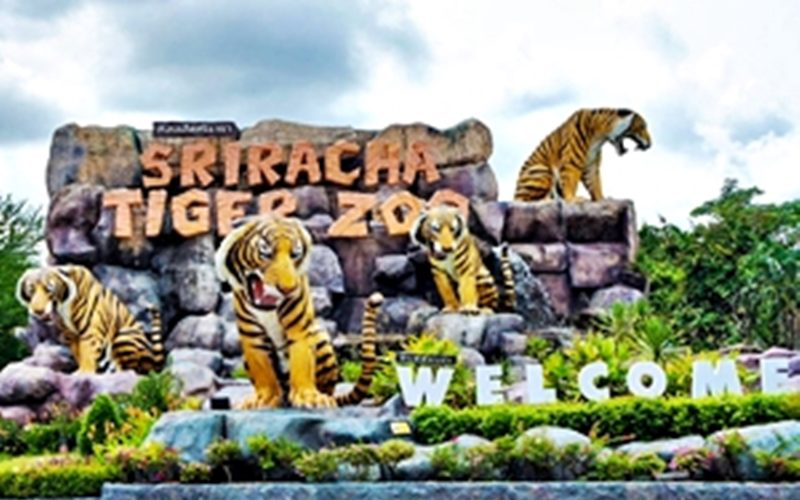 Sikhara Plago Resort :Sriracha Tiger Zoo