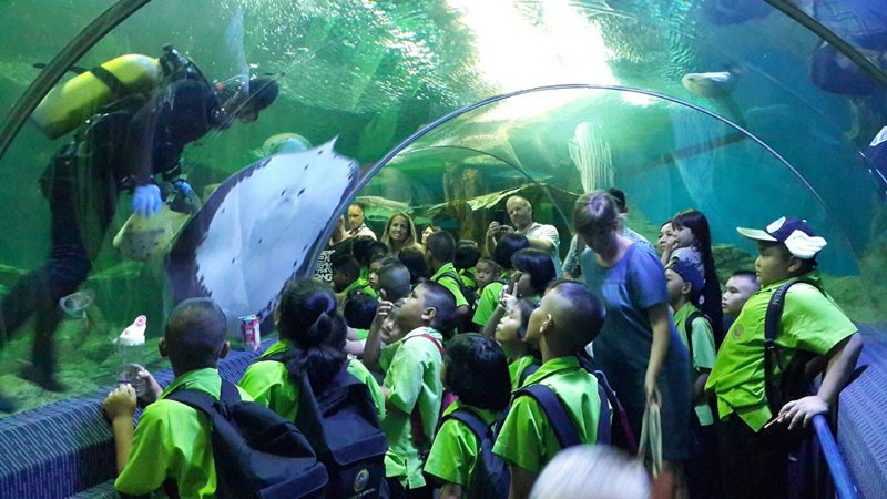 Pattaya Underwater World